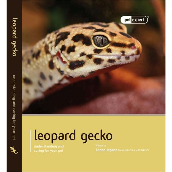 pet expert   leopard gecko   evolution reptiles