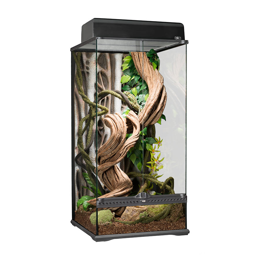 exo terra terrarium small x tall 45x45x90cm evolution. Black Bedroom Furniture Sets. Home Design Ideas