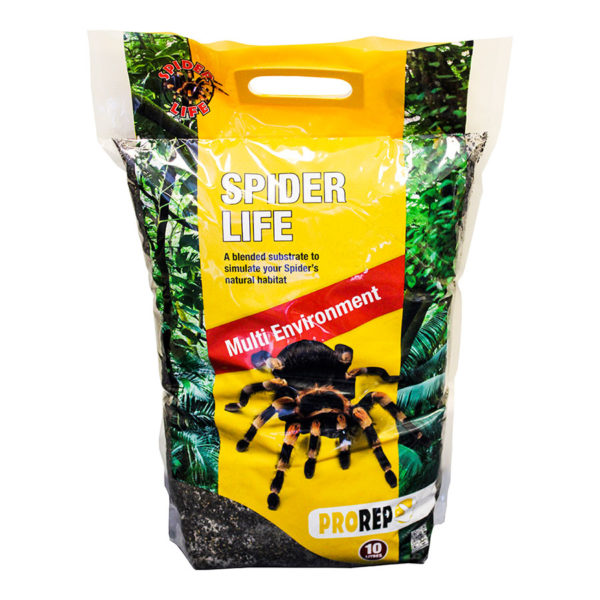 Spider Substrate
