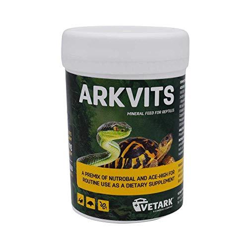 Arkvits