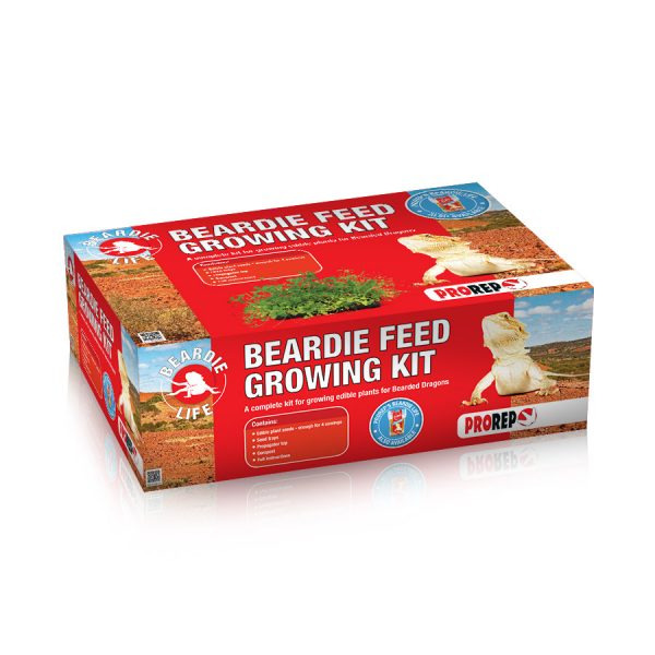 Bearded-Dragon-Feed-Growing-Kit-KPT055-6.jpg
