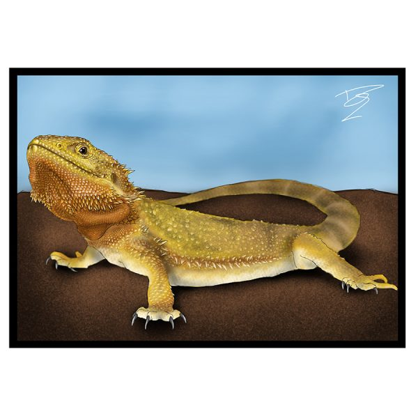 Bearded-Dragon-Greeting-Card-15.jpg