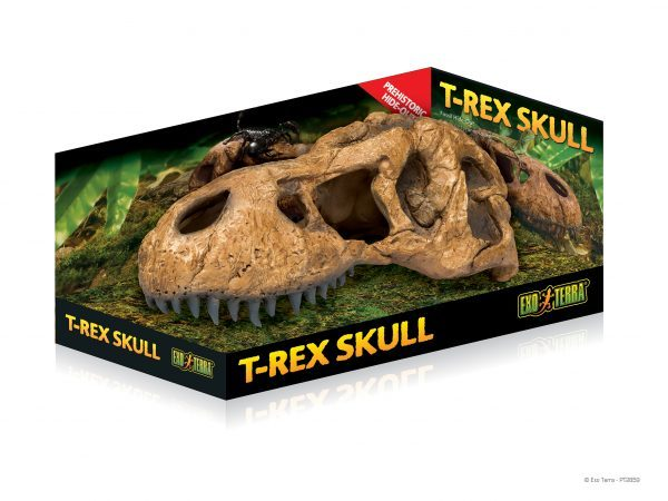 MOCK-UP_T-Rex-Skull_PT2859-e1461506611140-6.jpg