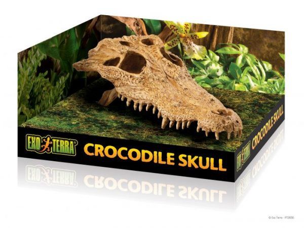 PT2856_Crocodile_Skull_Packaging-4-e1461507327292-6.jpg
