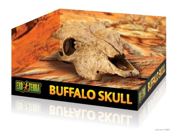 PT2857_Buffalo_Skull_Packaging-e1461507455698-6.jpg