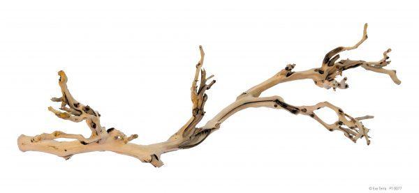 PT3077_Forest_Branch-e1461507231339-6.jpg
