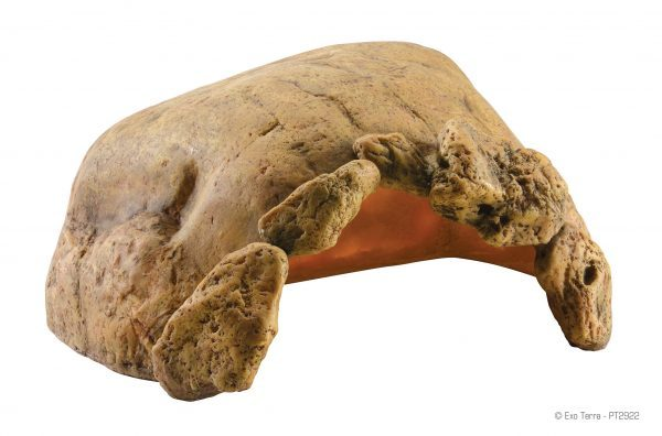 Tortoise-Cave_PT2922_RGB-e1461506546917-6.jpg