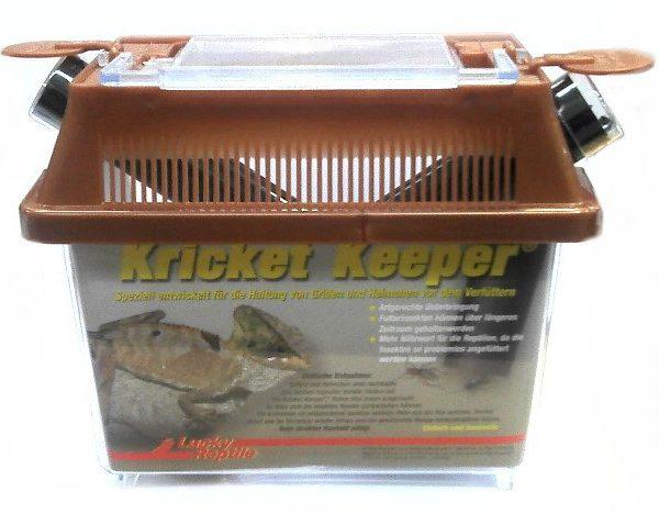 lucky_reptile_kricket_keeper_new-8.jpg