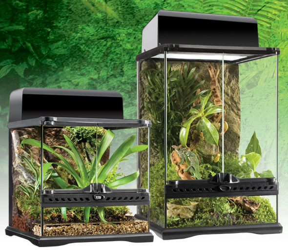 natural_terrarium_mini_set-6.jpg